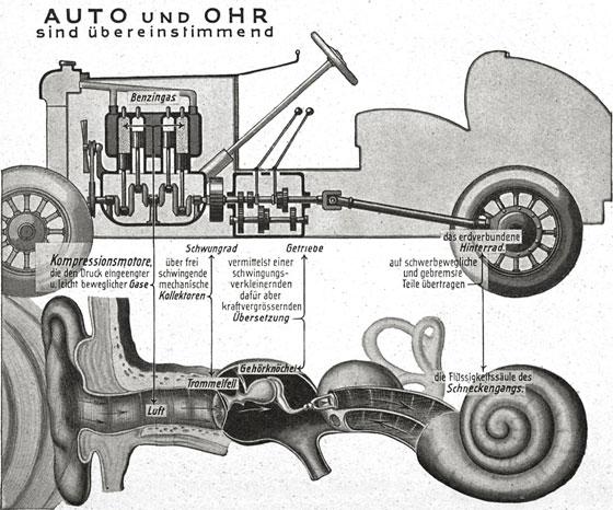 Car and ear